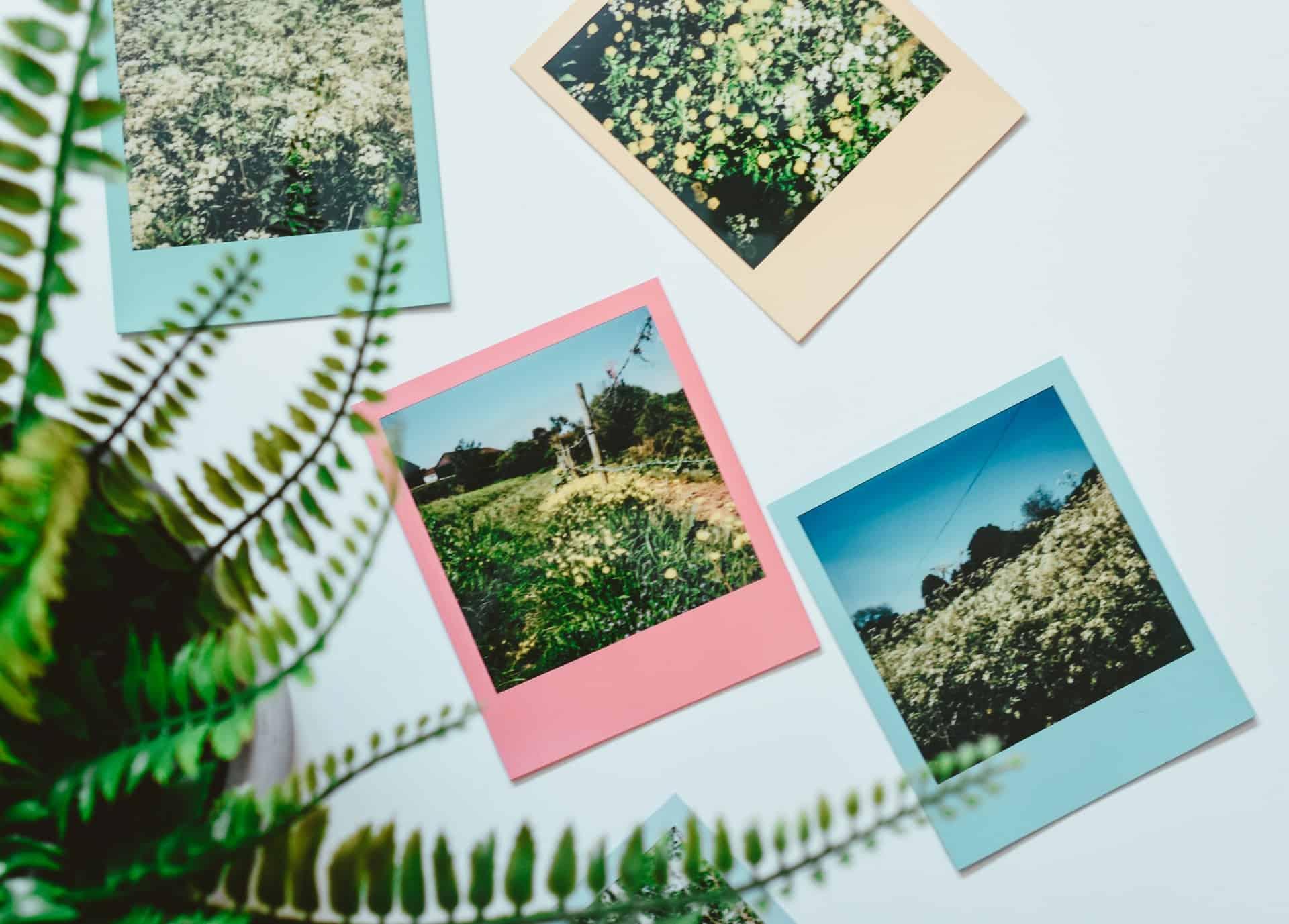 Cornici digitali Polaroid
