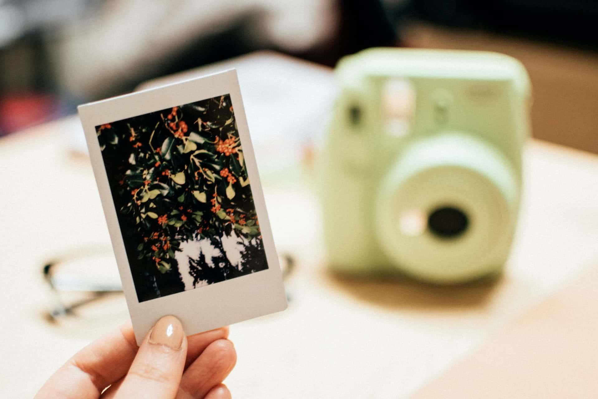Polaroid digital photo frames